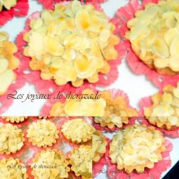 photos-pour-picasa-4-4_2