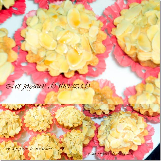 photos pour picasa (4)4