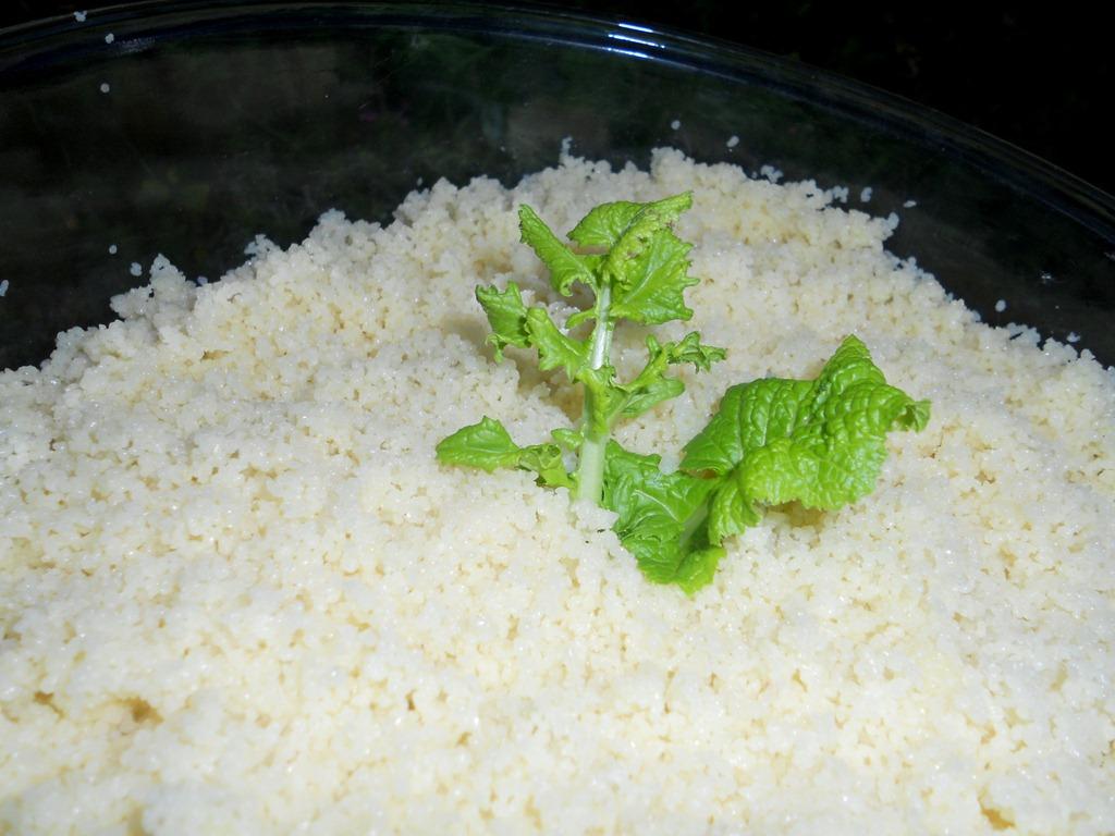 cuisson-du-couscous_2