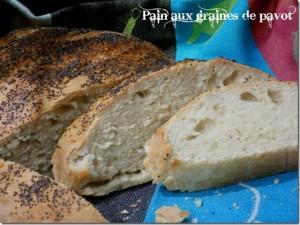 pain-fait-maison-aux-graine-de-pavot_thumb_1