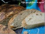 pain-fait-maison-aux-graine-de-pavot_thumb_12