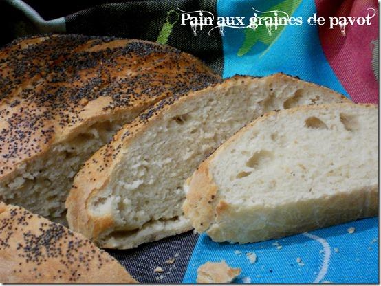 pain fait maison aux graine de pavot