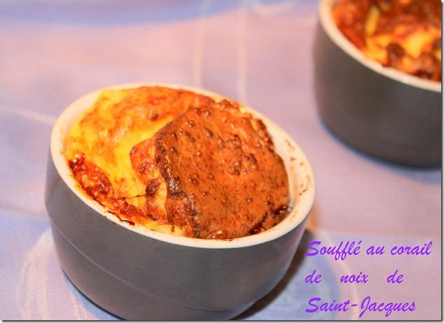 souffl-au-corail-de-noix-de-saint-jacques-_thumb