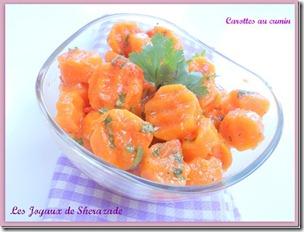 salade-ce-carotte-au-cumin_3
