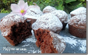 muffin-au-cacao_3