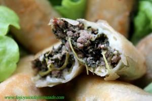 bourek-au-viande-hach-e-et-aux-pinards_2