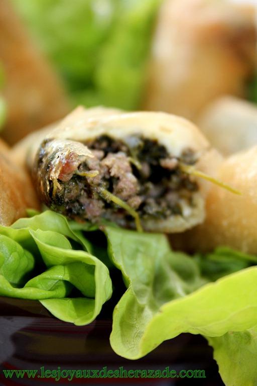 bourek-aux-pinards-viande-hach-e_2