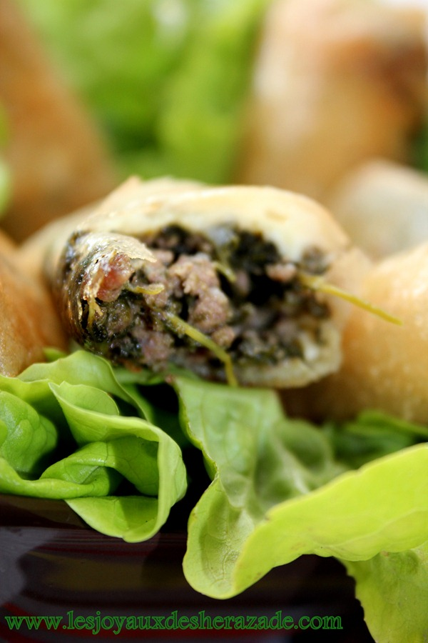 bourek aux épinards , viande hachée
