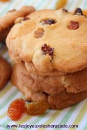 cookies-aux-raisins-faciles_2