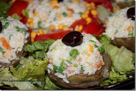 salade-compos-e-artichaud-farci-au-riz_thumb
