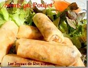 bourek-recette-ramadan-recette-de-nems-aux-poulets_31