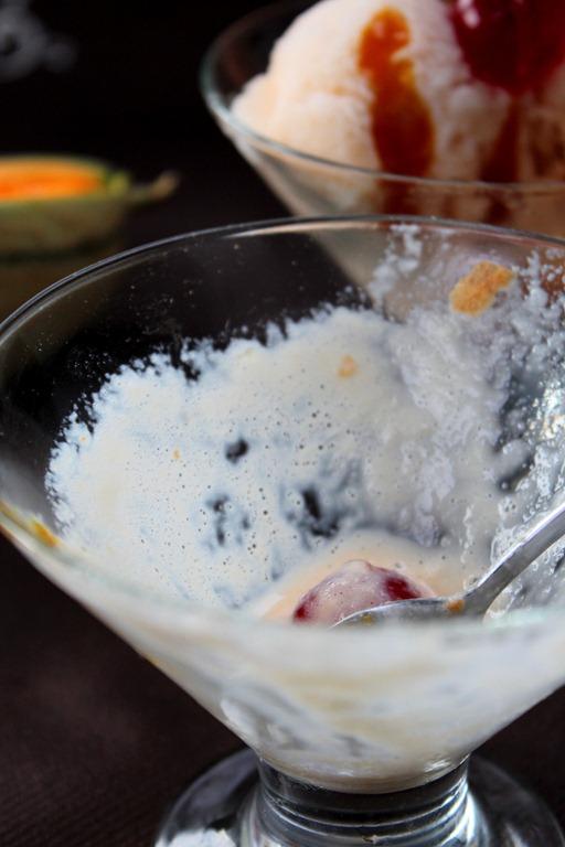 recette-de-glace-melon-d-liceuse_2