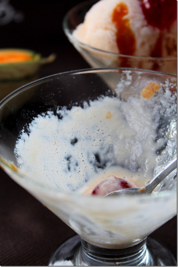 recette-de-glace-melon-d-liceuse_thumb