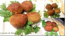 recette-ramadan-falafeal-entree-sp-ciale-ramadan_thumb