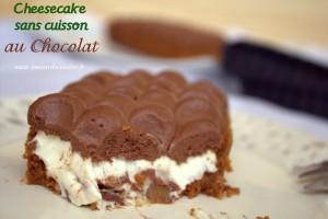 cheesecake-sans-cuisson-au-chocolat-117.CR2_21