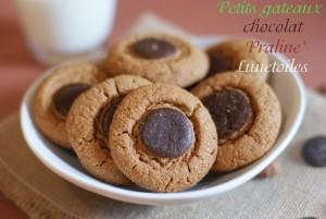 gateau-au-pralin-et-chocolat-4-_thumb