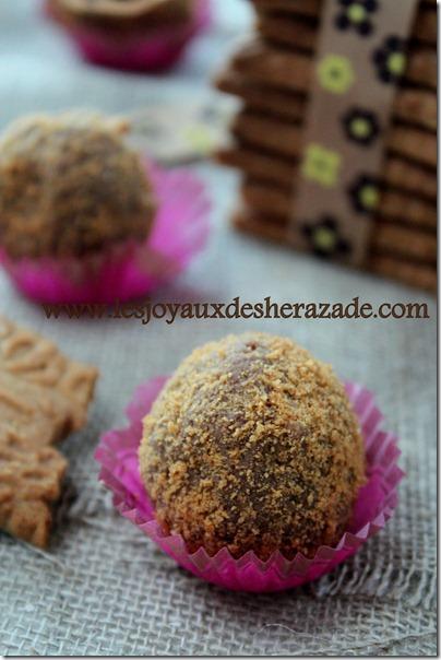 truffes au chocolat au lait _ spéculoos