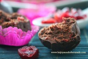 truffes-au-chocolat-noir_2