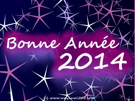 Une pluie d étoiles pour souhaiter une Bonne année 2013