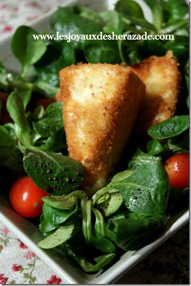 recette-de-camembert-pan-_thumb2