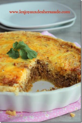 recette-de-tarte-la-viande-hach-e_thumb