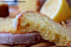 recette-de-cake-au-citron-de-christophe-felder_2