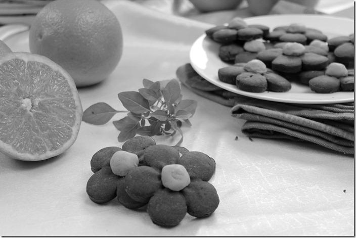 biscuit-tres-fondant-l-orange_thumb