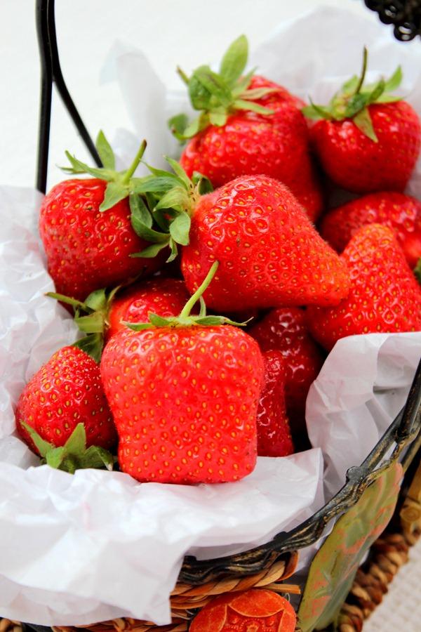 fraise_thumb1