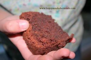 recette-de-cake-au-chocolat-moelleux_4
