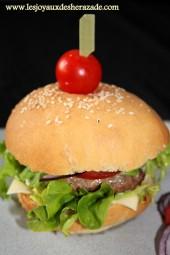 hamburger-fait-maison-hamburger-comme-chez-mac-donald_2