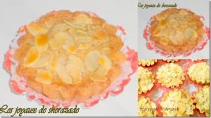 photos pour picasa (4)10
