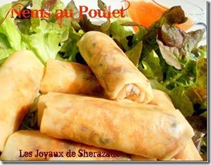 nems-de-poulet_31