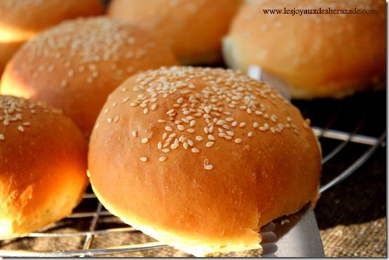 pain pour hamburger maison
