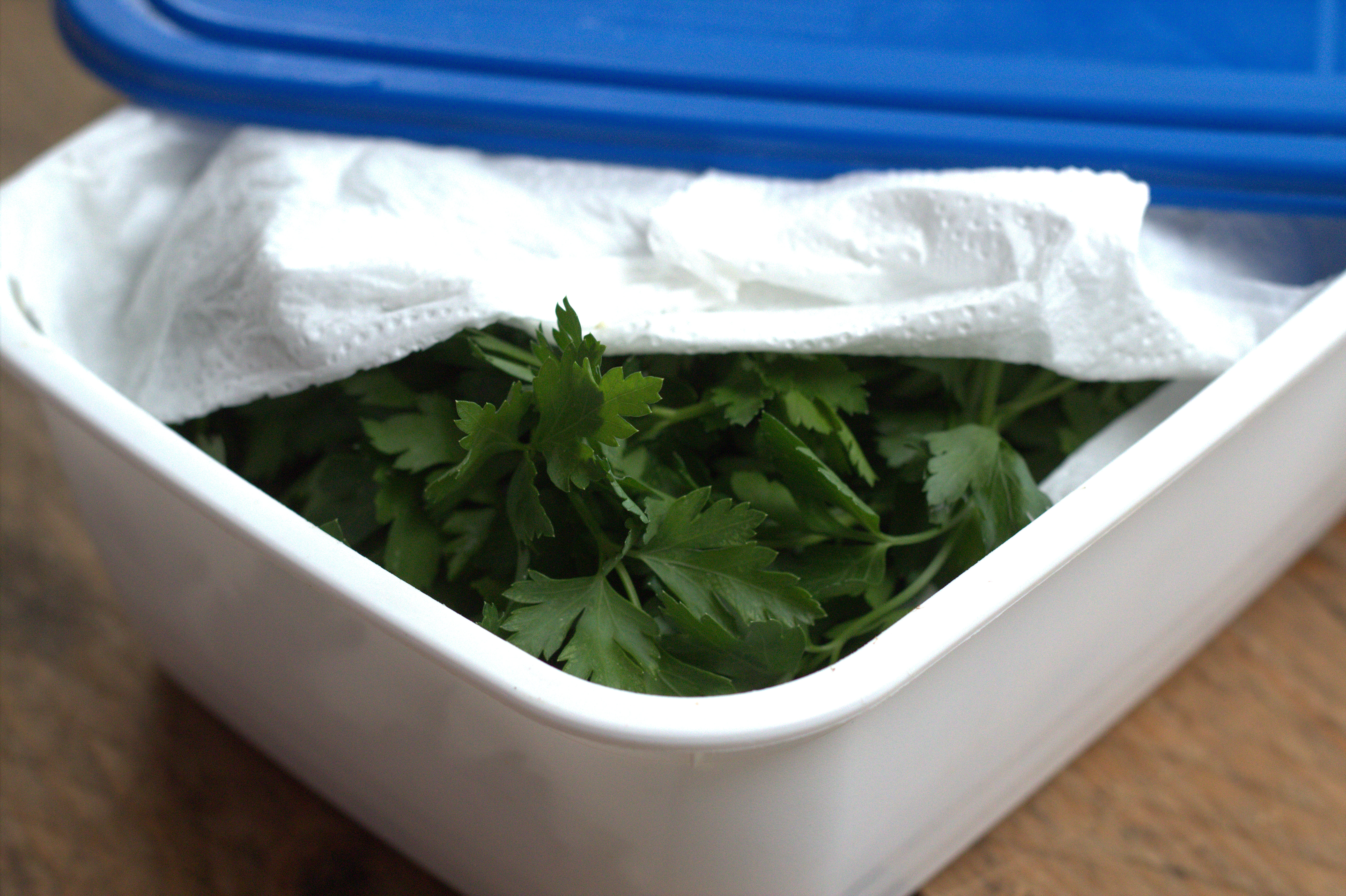 Conserver les herbes aromatiques persil coriandre - Comment congeler le persil ...