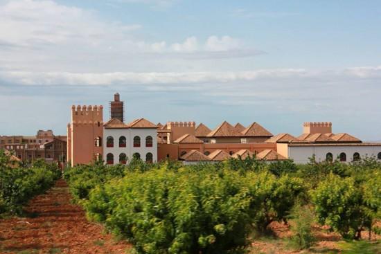 Les beaux vergers de Tlemcen avec l'institut des études andalouses.