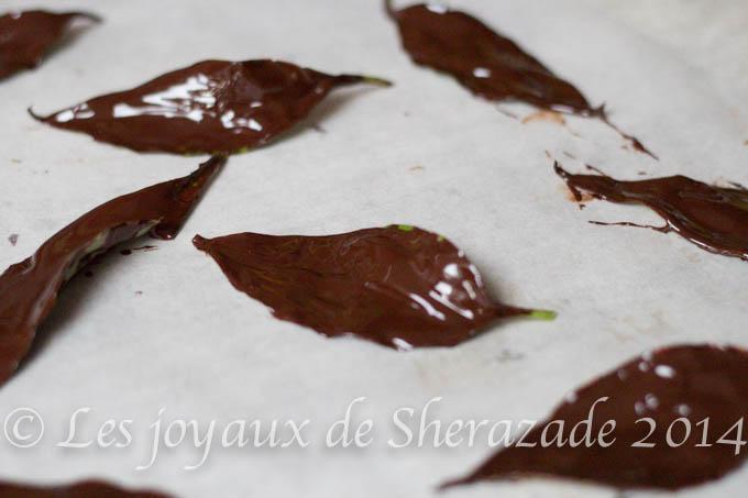 Comment faire des feuilles en chocolat