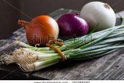 L'Oignon Toute une Histoire pour une bonne Santé